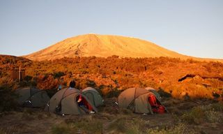 Trek Kilimanjaro - 7 day Rongai Route