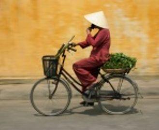 The Highlights of Vietnam
