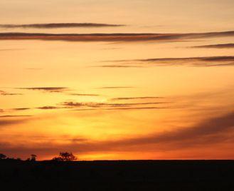 Ethiopian & Kenyan Rift Valley & Wildlife