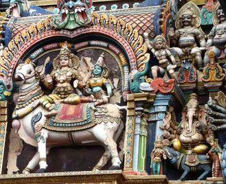 Delhi, Darjeeling & Beyond
