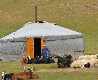 Nomads & Wilds Of Mongolia