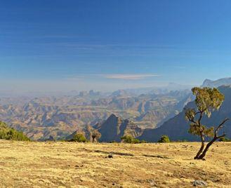 Ethiopia, East Africa & Gorillas