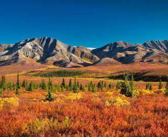 Wilds Of Alaska & Western Canada