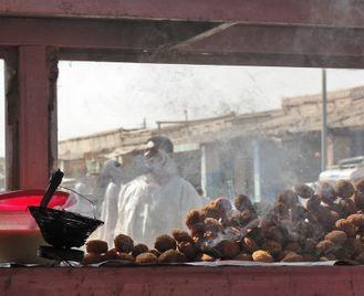 Saharan Gems Of Sudan & The Kush