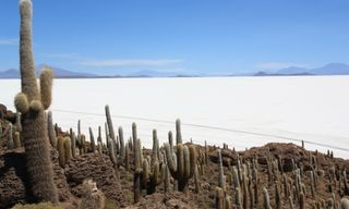 Bolivian Salt Flats Safari
