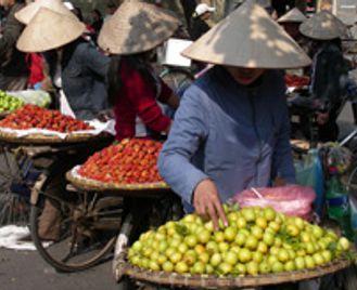 Best of Vietnam - 8 nights (Fully Tailored Journey)