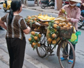 Vietnam Discovery - 19 nights (Fully Tailored Journey)