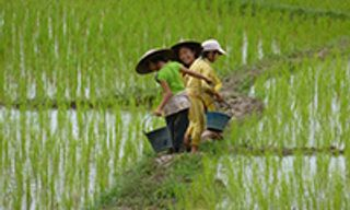 Laos Overland: Along the Mekong - 14 nights (Fully Tailored Journey)