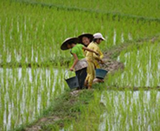 Laos and Cambodia Combined - 13 nights (Fully Tailored Journey)
