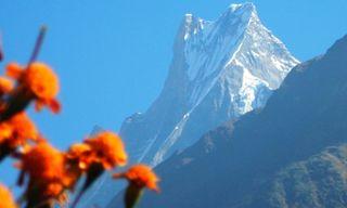 Annapurna Sanctuary and Poon Hill Trek