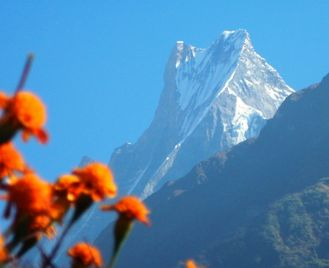 Annapurna Sanctuary and Poon Hill Trek