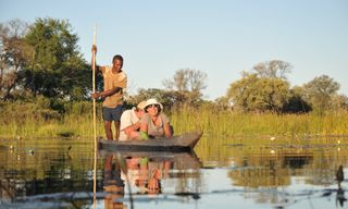 Best of Botswana, Lodge Safari