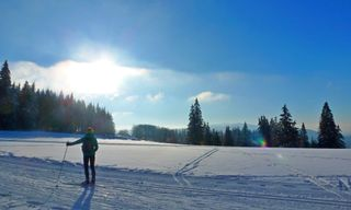 Highlights of the Black Forest Ski Traverse