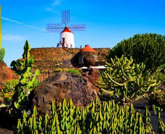 Walking Lanzarote - The Island of Eternal Spring