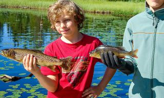 Swedish Wilderness Family Adventure Holiday