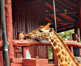Kenyan Wildlife Wonders - Family Safari Adventure