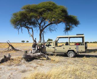 Northern Botswana Safari, The Okavango and beyond