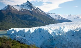 Wildlife and Glaciers of Patagonia