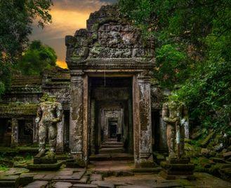 Cambodian insight