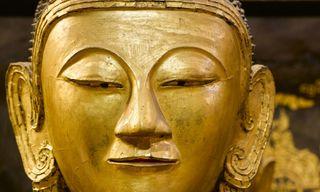 Burmese Insights