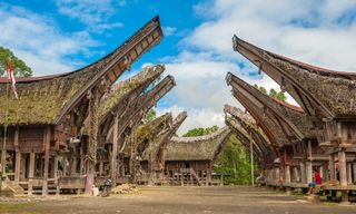 Culture & adventure in South Sulawesi