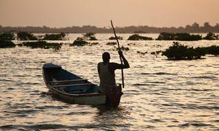 Step into Senegal