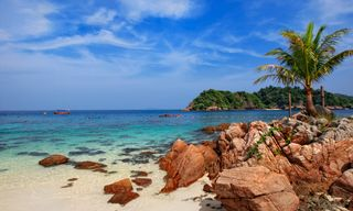 Taman Negara and Redang Island