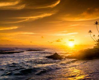 Southern sun in Sri Lanka