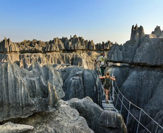 Discover the Rainforest and Limestone of Tsingy & Baobabs