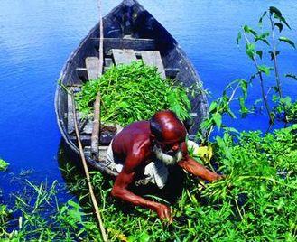 Bangladesh Discovery (15 days)