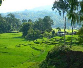 Indonesia - Sulawesi Explorer (15 Days)