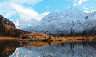 Rockies Explorer & Alaska Cruise Escorted Tour