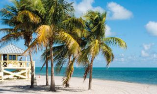 Miami & Florida Keys Fly-Drive Tour