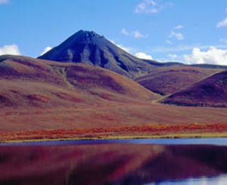 Yukon Back Country Horse Tour - 6 nights