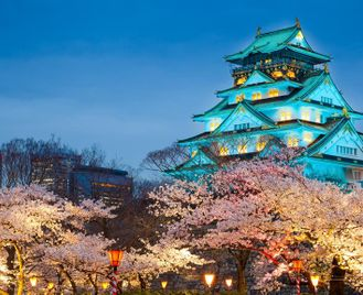 Classic Japan Escorted Tour