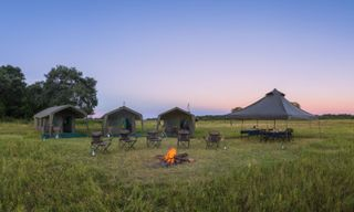 11 Day Kalahari and Okavango Mobile Safari