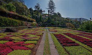 Madeira - Portugal's Garden Island