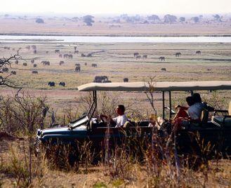 Botswana family safari adventure