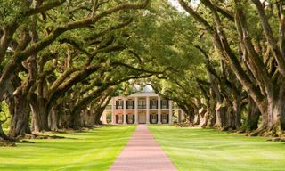Discovering the Deep South