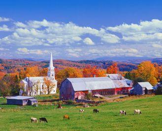 Luxury New York City and New England