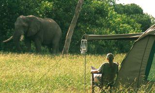 Mobile camping in the Okavango Delta