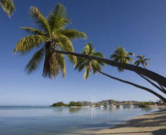 Discover Fiji