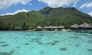 Classic French Polynesia