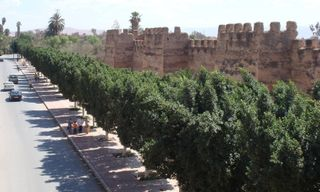 Southern Morocco, Anti-Atlas & the Atlantic Coast