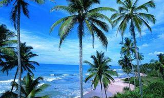 Sri Lanka's temples & the Maldives
