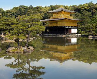 Japan's cities: Tokyo & Kyoto