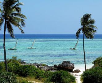 Gorilla tracking & Zanzibar adventure
