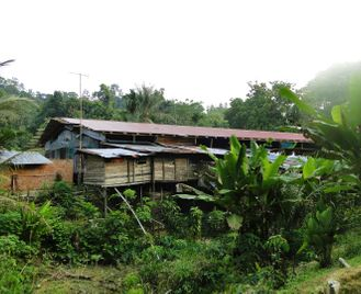 Borneo: On the Trail of the Headhunters