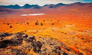Spectacular Yukon Self-Drive