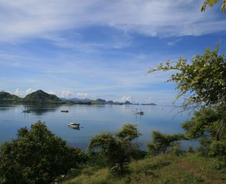 Indonesia's Eastern Islands Explorer Tour